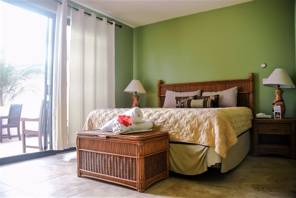 Desert - Mountain View Room – 1 King Bed